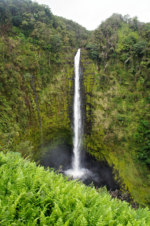 Akaka Falls is over 400 feet tall. It's one of the most beautiful waterfalls on earth.
