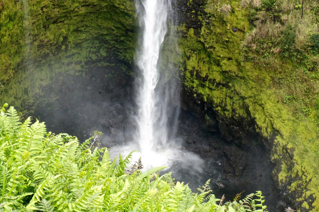 Close up of Akaka Falls on the Big Island, Hawaii.