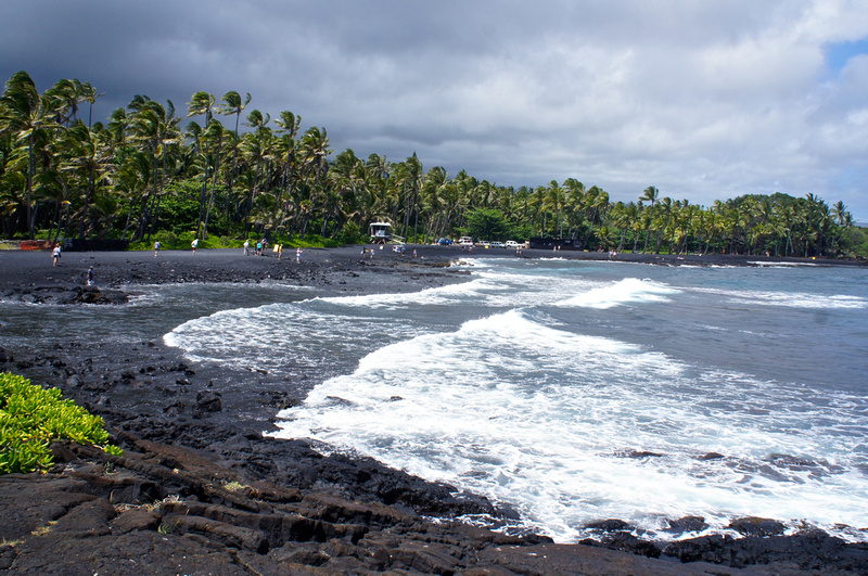 The whole landscape looked out of this world: black sand beach, turtles on the shore,  crashing blue and white waves and green palm trees provided for an extremely picturesque scene.