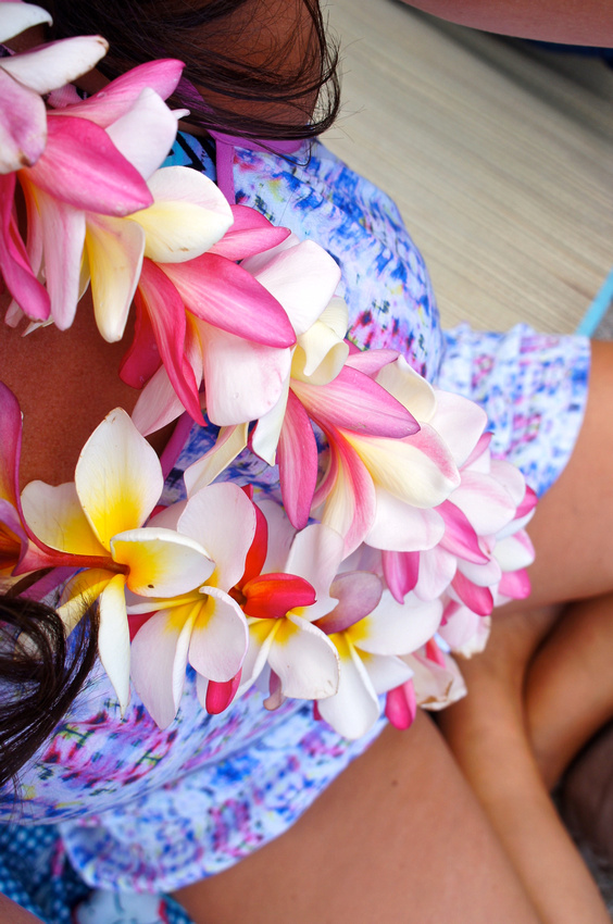 You can make your own lei from plumeria flowers when visiting Hawaii. Just look for freshly fallen flowers around you.