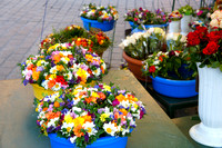 Flowers in Main Market Square