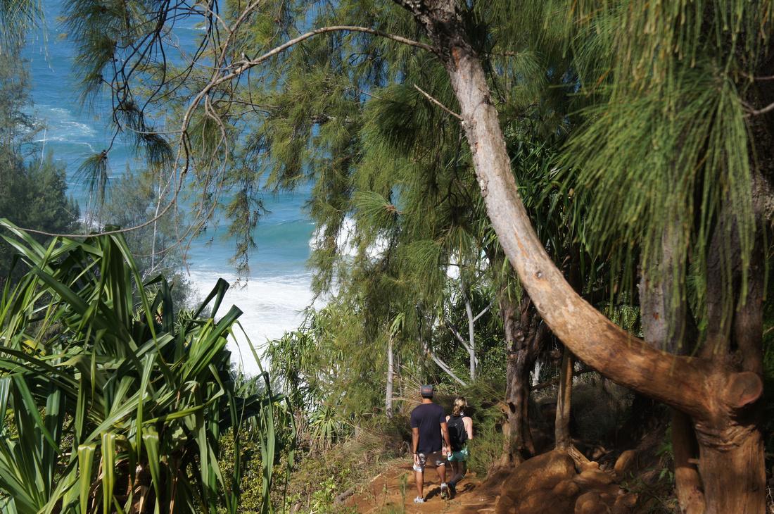 So much fun to hike Kalalau trail to Hanakapiai Falls