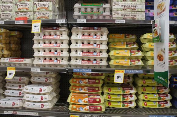Eggs sold in New Zealand on shelves