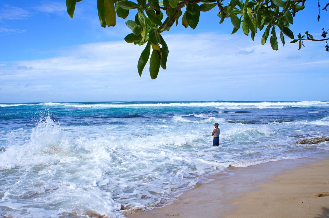 North Shore Beach, Oahu, Hawaii