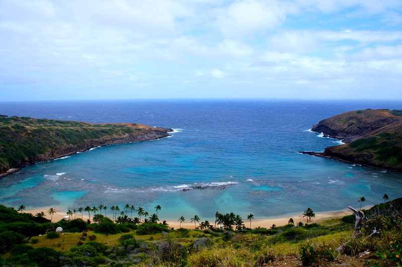Beautiful view from the trail on Hanauma Bay. The beach is empty because the place is closed on Tuesdays.